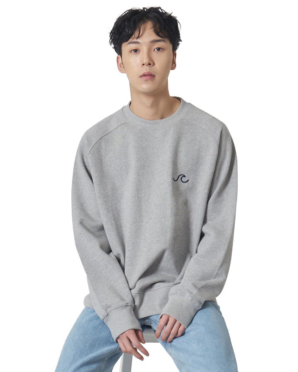 Raglan Logo Sweat Shirts _ gray